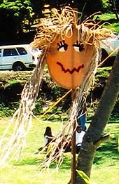 An easy novelty scarecrow