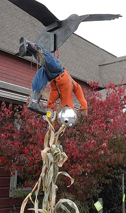 scarecrow carried off by crow